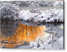 Reflections In Melting Snow Acrylic Print by Neil Doren