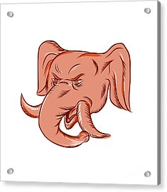 Republican Elephant Mascot Head Etching Acrylic Print by Aloysius Patrimonio