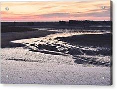 Dusky Wetland Acrylic Print