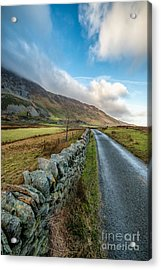 Road To Winter Acrylic Print by Adrian Evans