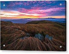 Roan Mountain Sunrise Acrylic Print