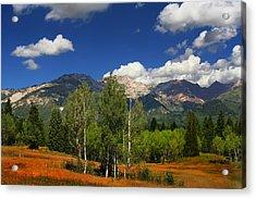 Rocky Mountains Acrylic Print by Mark Smith