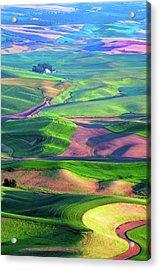 Green Hills Of The Palouse Acrylic Print by James Hammond