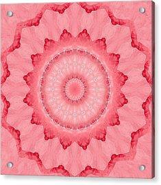 Acrylic Print featuring the digital art Rose by Elizabeth Lock