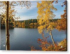 Saegemuellerteich, Harz Acrylic Print