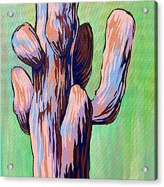 Saguaro 18 Acrylic Print