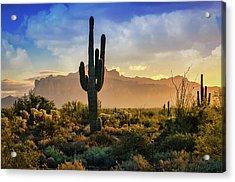 Acrylic Print featuring the photograph Saguaro Sunrise In The Superstitions  by Saija Lehtonen