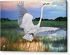 Sail Into Sunset Acrylic Print by Judy Kay