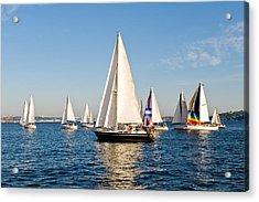 Sailboats Acrylic Print by Tom Dowd