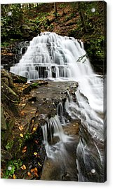 Acrylic Print featuring the photograph Salt Springs Waterfall by Christina Rollo