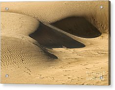 Acrylic Print featuring the photograph Sand Dune by Yew Kwang