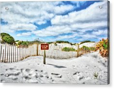 Acrylic Print featuring the photograph Sand Dunes At Grayton Beach # 4 by Mel Steinhauer