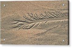 Sand Patterns On The Beach 2 Acrylic Print