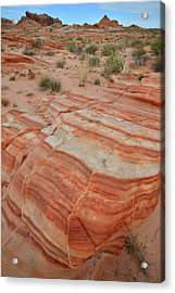 Acrylic Print featuring the photograph Sandstone Stripes In Valley Of Fire by Ray Mathis