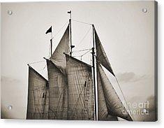 Schooner Pride Tall Ship Charleston Sc Acrylic Print by Dustin K Ryan