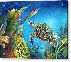 Sea Escape Iv - Hawksbill Turtle Flying Free Acrylic Print