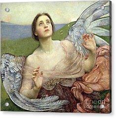 Sense Of Sight Acrylic Print by Annie Louisa Swinnerton