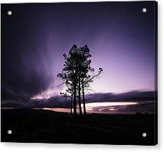 Acrylic Print featuring the photograph Sentinels by Antonio Jorge Nunes