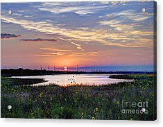 September Sunrise Over The Baker Wetlands Acrylic Print by Jean Hutchison
