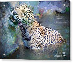 Seven Year Itch Acrylic Print by Judy Kay