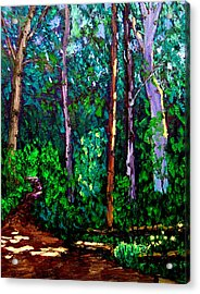 Sewp 6 15 Acrylic Print by Stan Hamilton