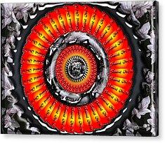 Shine On It Acrylic Print by Robert Orinski