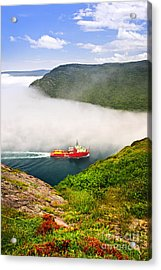Ship Entering The Narrows Of St John's Acrylic Print by Elena Elisseeva
