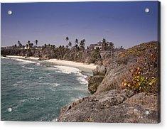 Shores Of Barbados Acrylic Print by Andrew Soundarajan