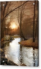 Acrylic Print featuring the photograph Silence Is Golden by Robin-Lee Vieira