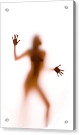 Silhouette 14 Acrylic Print by Michael Fryd
