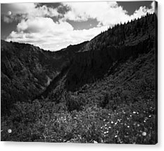 Silver Star Mountain Acrylic Print by Benjamin Garvey
