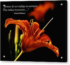 Single Tiger Lily Poster Acrylic Print by Roger Soule