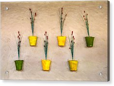 Six Flower Pots On The Wall Acrylic Print by Gary Slawsky