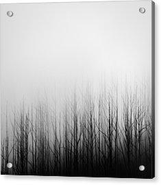 Skeleton Trees 3 Acrylic Print