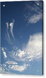 Sky Dance Acrylic Print by Brande Barrett
