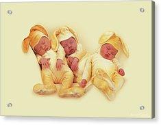 Sleeping Bunnies Acrylic Print