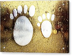Small Feet And Big Feet 22 Acrylic Print by Jean Francois Gil