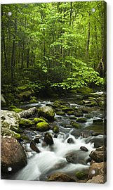 Smoky Mountain Stream Acrylic Print by Andrew Soundarajan