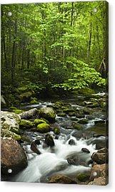 Smoky Mountain Stream Acrylic Print by Andrew Soundarajan