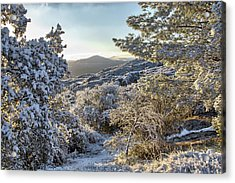 Snow At Sunrise 3 Acrylic Print by Peter Dyke