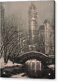 Snow In Central Park Acrylic Print by Tom Shropshire
