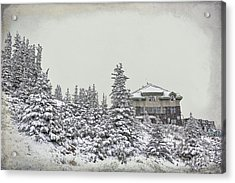 Acrylic Print featuring the photograph Snow In July by Teresa Zieba