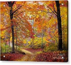 Soft Autumn Rain Acrylic Print