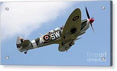 Spitfire Acrylic Print by Angel  Tarantella