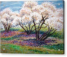 Spring Has Sprung Acrylic Print by Art Nomad Sandra  Hansen