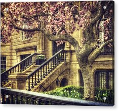 Spring In Boston Acrylic Print by Joann Vitali