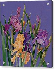 Spring Recital Acrylic Print by Ann Peck