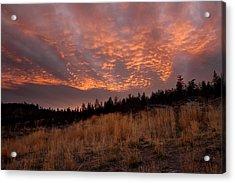 Steelhead Provincial Park Sunset Acrylic Print by Pierre Leclerc Photography