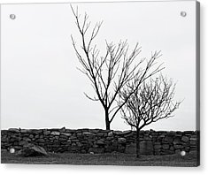 Stone Wall With Trees In Winter Acrylic Print