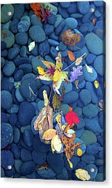 Stones0928 Acrylic Print by Carolyn Stagger Cokley